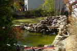 Thumbnail 10 PLR Adding A Fish Pond To Your Backyard Articles + Bonus