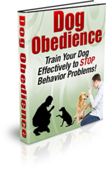 Product picture Complete PLR Dog Niche In A Box PLR + Bonus Software