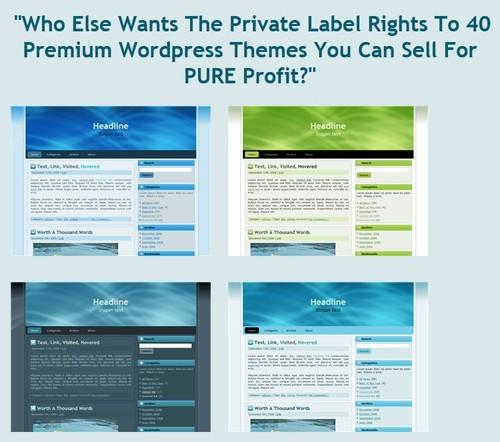 Product picture 40 PLR Wordpress Themes + Bonus