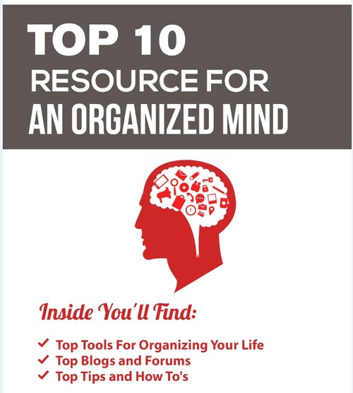 Product picture Organized Mind PLR + Bonus